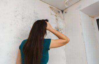 O ar condicionado pode ajudar a diminuir a umidade da casa